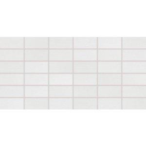 RAKO Fashion mozaika set 30x60 cm svetlá sivá 5x10 DDMBG622