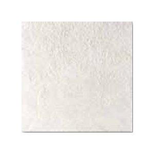RAKO GROUND dlaždica biela 33x33 DAR3B692