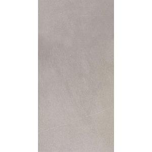 Villeroy & Boch Bernina Dlažba (Obklad) 2394RT5M svetlošedá 30x60 cm