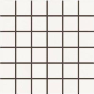 RAKO BLEND mozaika set 30x30 cm biela 5x5 WDM06805