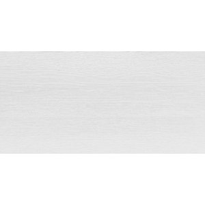 RAKO Saloon obkladačka rektifikovaná svetlá sivá 30x60 WAKV4162